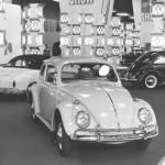 1964_5 beetle